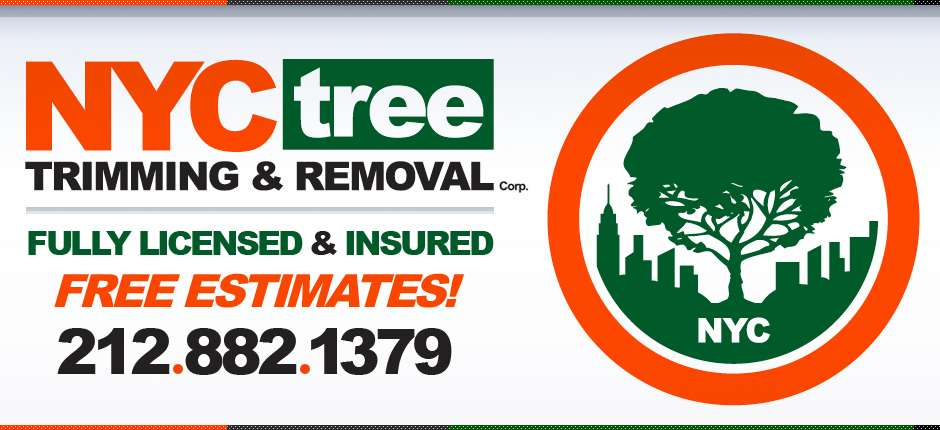NYC-Tree-2013-Website-Slider-Licensed