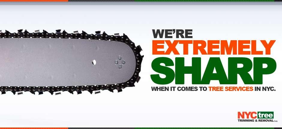 NYC-Tree-2013-Website-Slider-SHARP